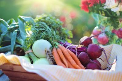 vegetables-2485055_1920